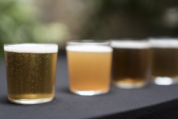 Teambeer y cata de cerveza